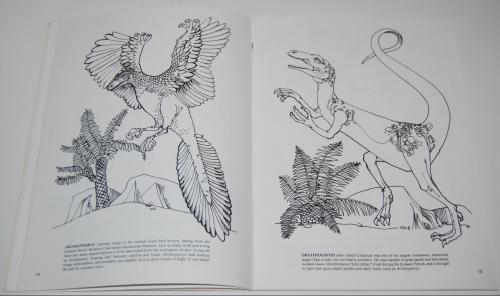 Dover dinosaur coloring book 5