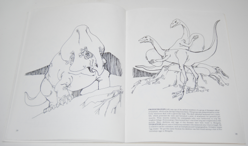 Dover dinosaur coloring book 9