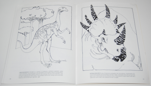Dover dinosaur coloring book 11