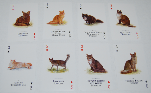 Cats of the world playing cards 3