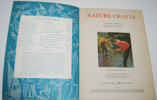 Nature crafts1