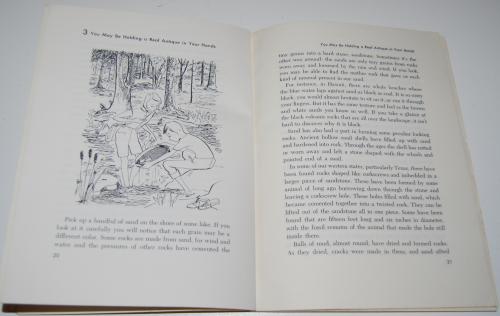 The adventure book of rocks 4