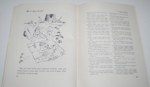 The adventure book of rocks 12