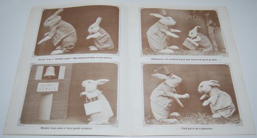 Big bunny family album harry frees 5