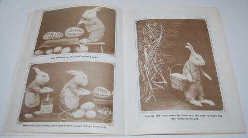 Big bunny family album harry frees 8
