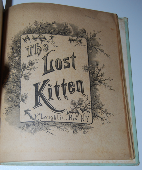 The lost kitten & other stories book 1