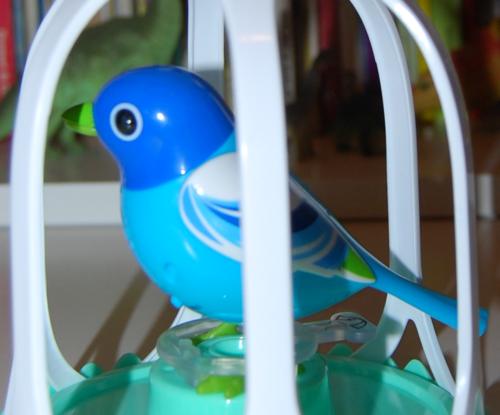 Digibirds 4