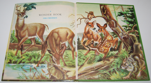 Bambi's children wonder book 9