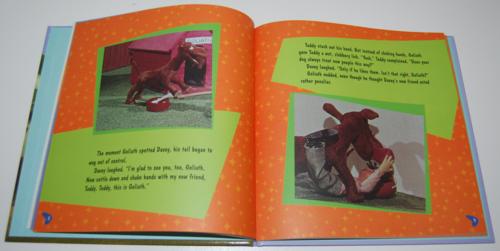 Davey & goliath books 6
