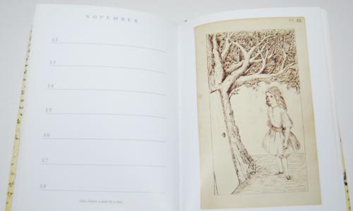 Alice's adventures underground book of days 9