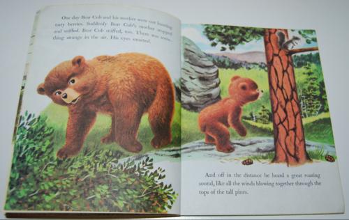 Smokey the bear little golden book 3