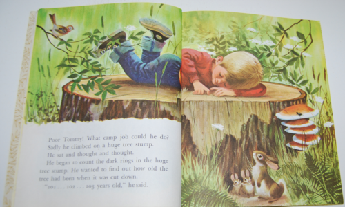 Tommy's camping adventure little golden book 3