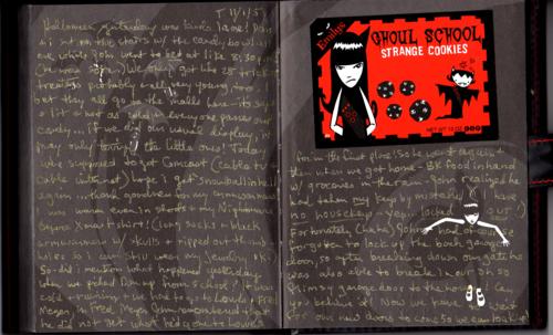 Emily strange journals 2xx