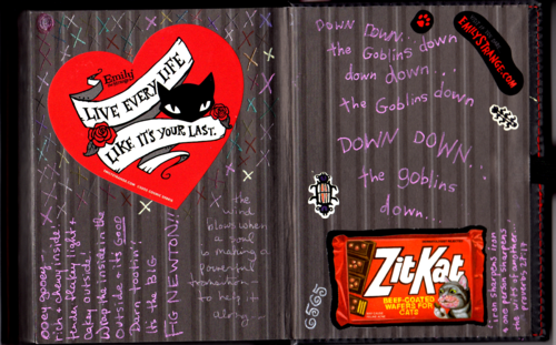 Emily strange journals 2xxx