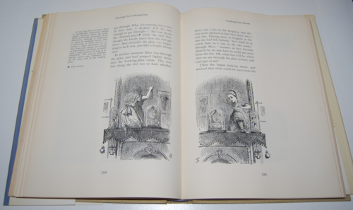 The annotated alice first edition 8
