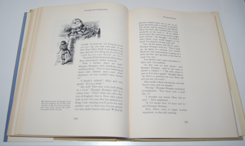 The annotated alice first edition 9