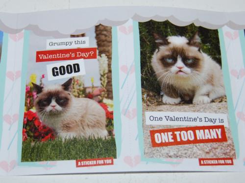 Grumpy cat valentines 7