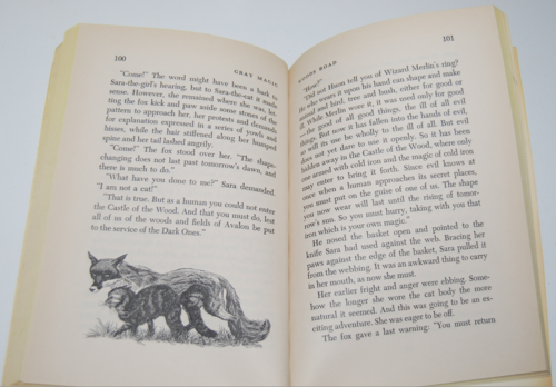 Gray magic scholastic book 7