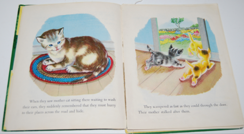 The kittens who hid from their mother 5