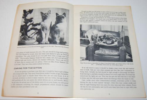Kittens vintage guide 5