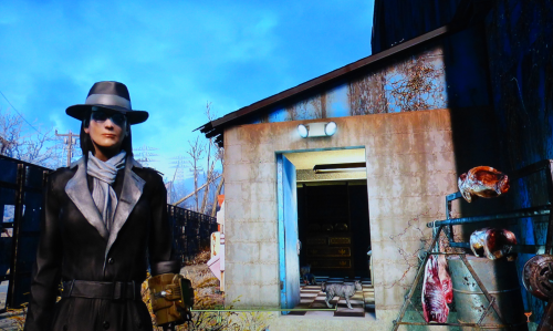 Bren aka the professor fallout 4