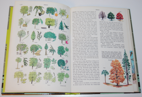 The golden book picture encyclopedia set 11