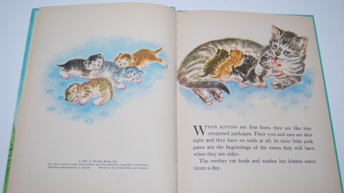 The wonder book of kittens 2