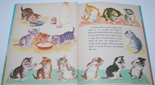 The wonder book of kittens 4