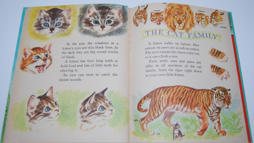 The wonder book of kittens 5