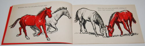 I can read about horses 2