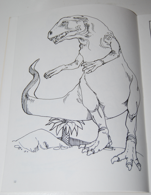 Dover dinosaur coloring book 4