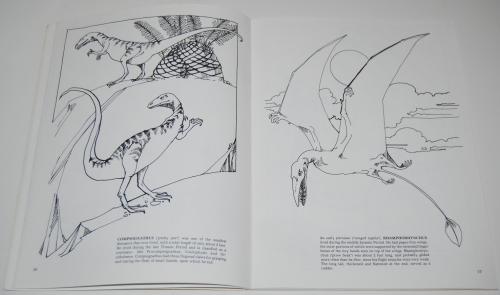 Dover dinosaur coloring book 6