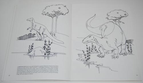 Dover dinosaur coloring book 8
