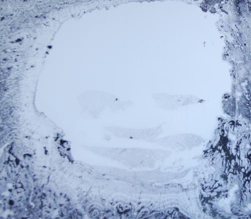 Radiohead a moon shaped pool x