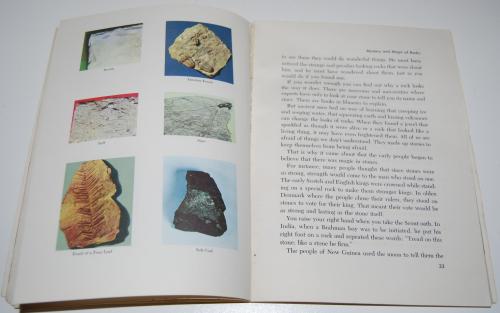 The adventure book of rocks 8