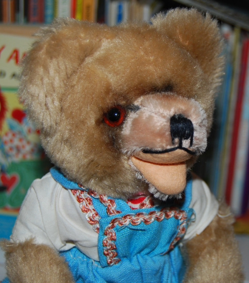 Tricycle bear 3