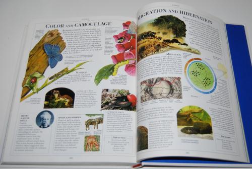 The dk science encyclopedia 17