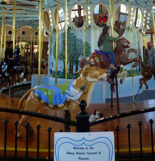 Albany carousel x