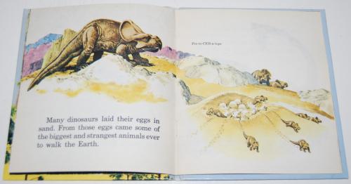 Little book of dinosaurs 4
