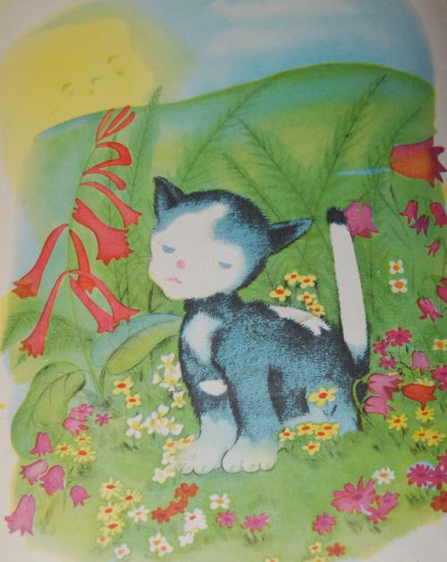 The proud little kitten 11