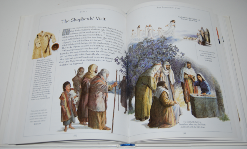 The children's illustrated bible 6