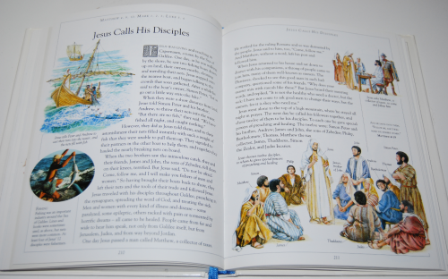 The children's illustrated bible 8
