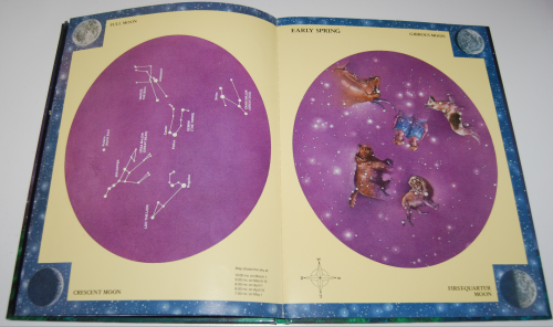 Glow in the dark night sky book 3