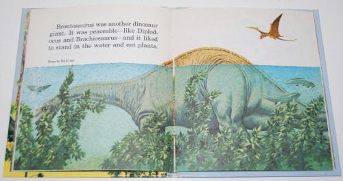Little book of dinosaurs 6