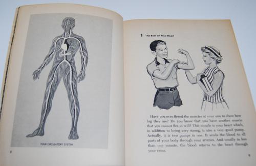 Golden human biology book 3