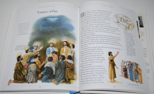 The children's illustrated bible 11