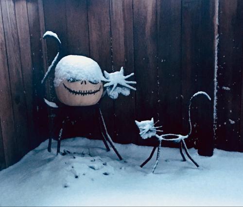 Snowed in 2019 deck