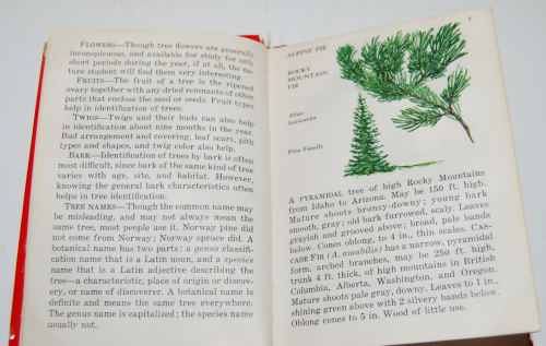Red book of trees 1