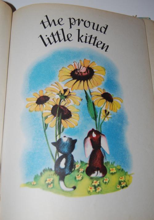 The proud little kitten 1
