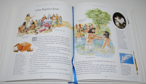 The children's illustrated bible 7